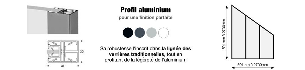 Profil en aluminium pour une verrière sous comble sur mesure